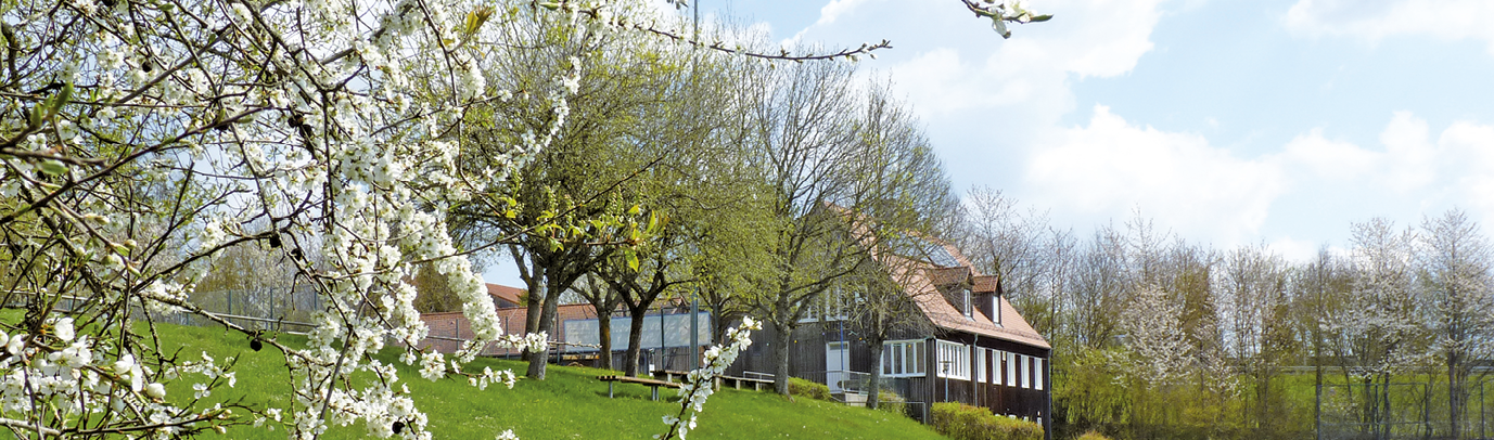 SV Loderhof / Sulzbach e.V.